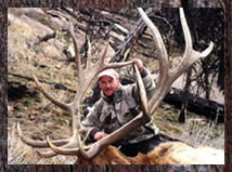 Click here to learn more about our elk hunts.